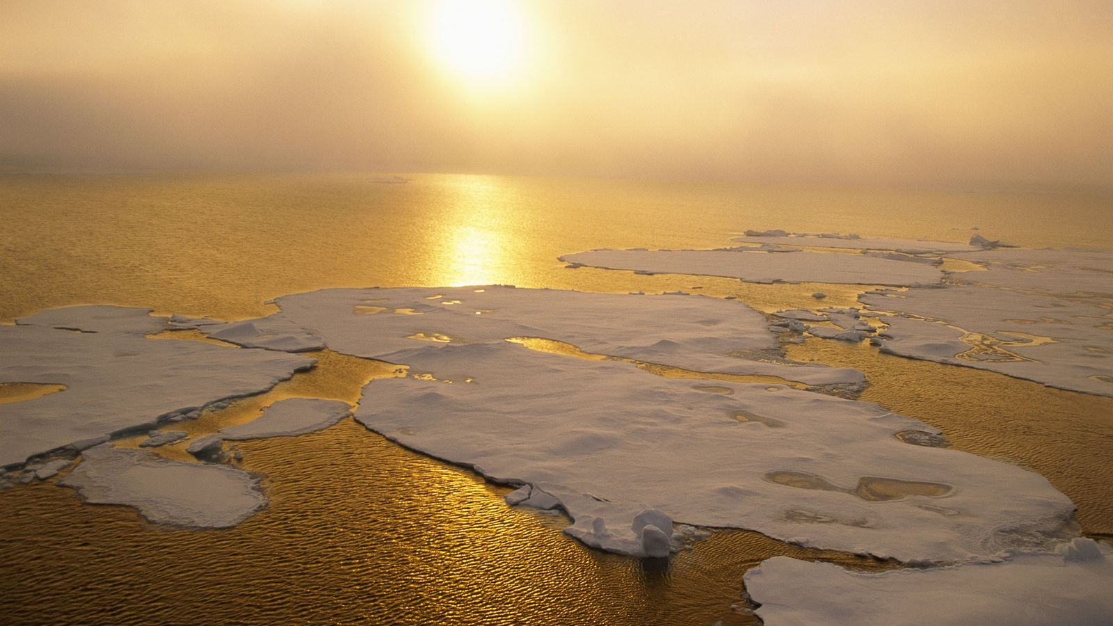El hielo ártico se está derritiendo rápidamente, creando más agua abierta. Pero los científicos saben poco ...