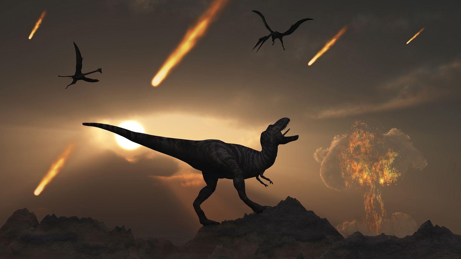 Al final del período Cretácico hace 66 millones de años, un impacto de un asteroide gigante ...