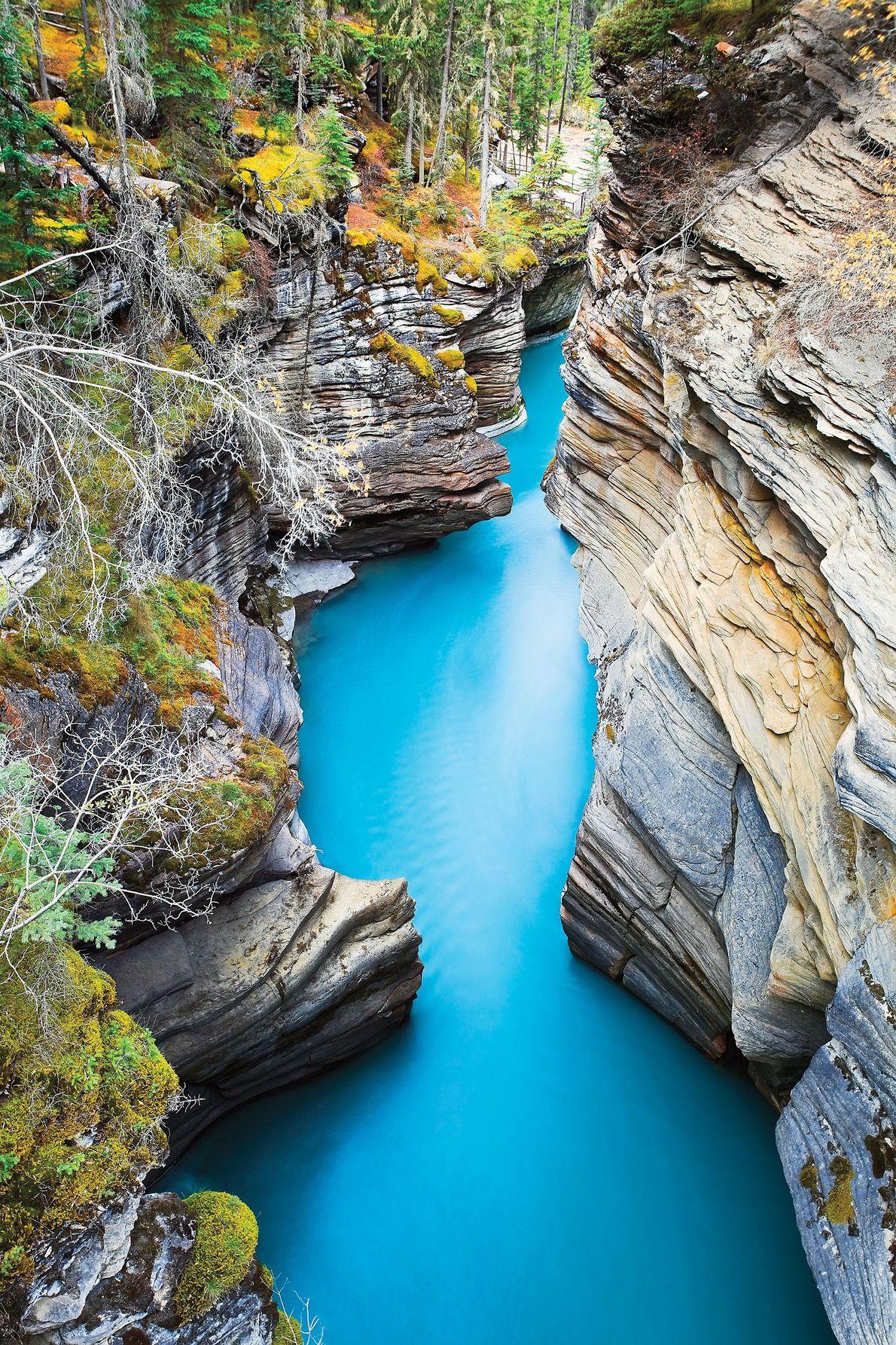 Parque Nacional de Jasper, Alberta, Canada
