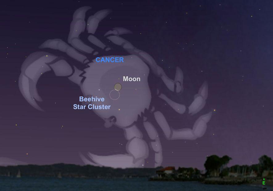Busca como parece que la Luna creciente roza las estrellas del pesebre el 28 de agosto.