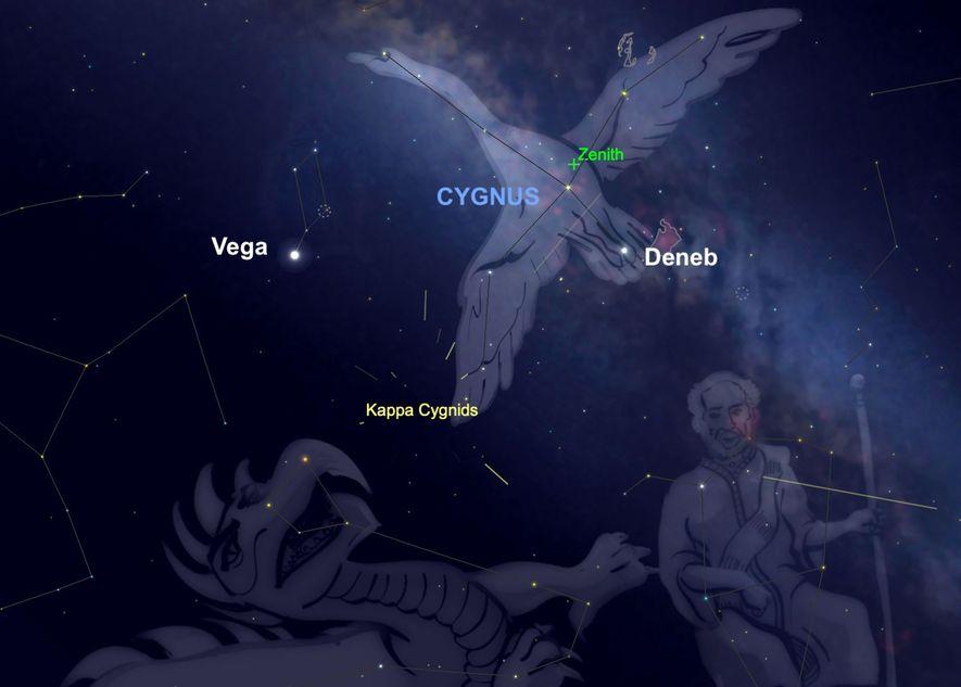 La lluvia de meteoros Kappa Cygnid parecerá irradiar desde la constelación Cygnus el 17 de agosto.