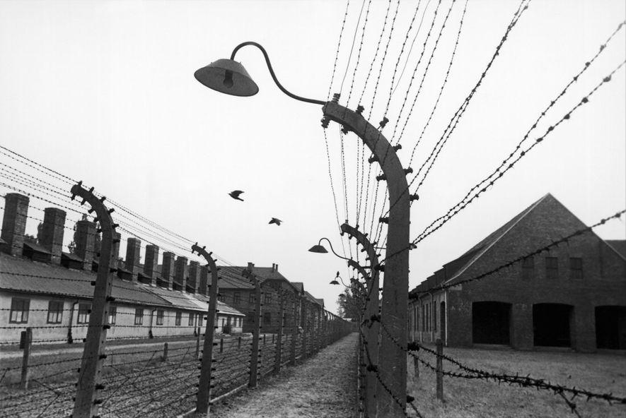 Cuando Edith Friedmann y las otras jóvenes llegaron a Auschwitz, al principio no sabían que eran ...