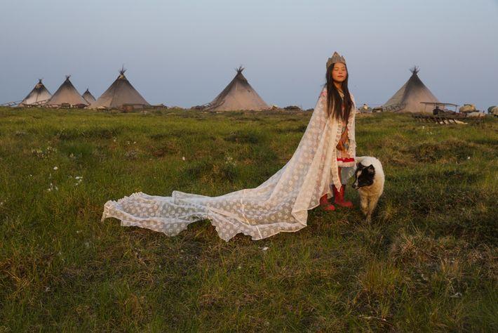 PENÍNSULA DE YAMAL, Rusia Una cortina sirve de capa, una caja de cartón de regia corona. Durante ...
