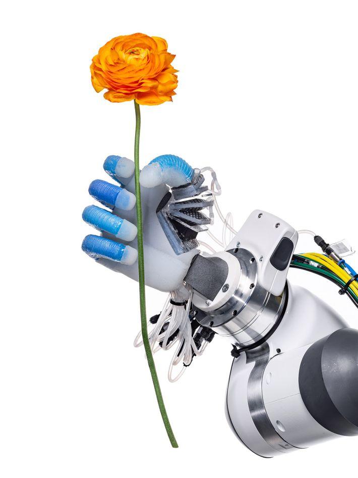 En el Laboratorio de Robótica y Biología de la Universidad Técnica de Berlín se encuentra esta ...