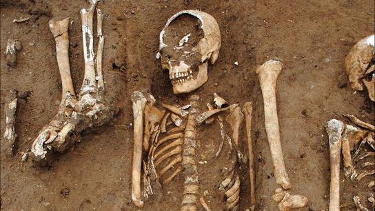 Cuatro docenas de individuos fueron enterrados en una fosa común (detalles arriba) en las tierras de ...