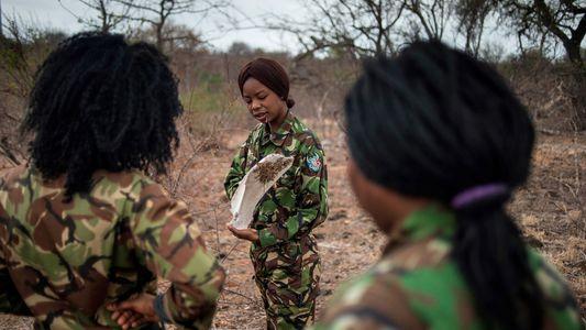 Las Mambas Negras: una unidad femenina que lucha contra la caza furtiva en Sudáfrica