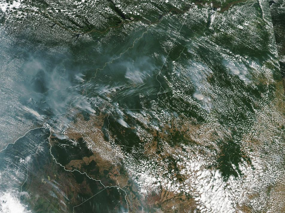 La Amazonía arde a un ritmo récord... y la deforestación es la culpable