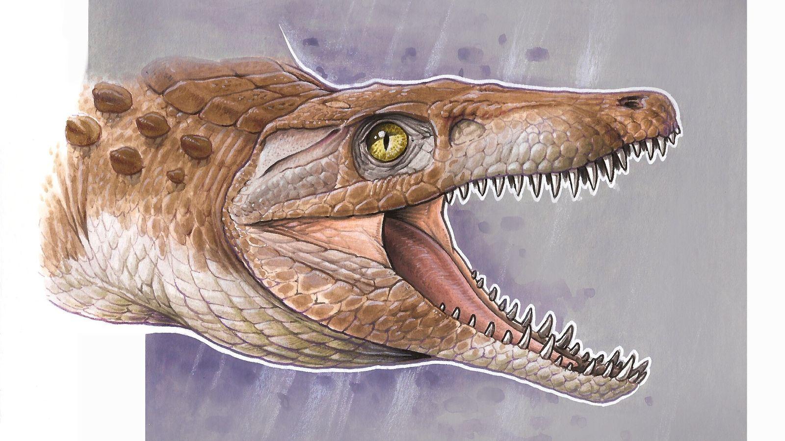 Reconstrucción artística de Burkesuchus mallingrandensis.