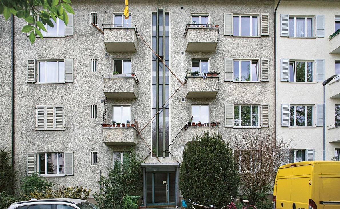 Las escaleras para gallinas reacondicionadas ayudan a los gatos a desplazarse desde pisos más altos.
