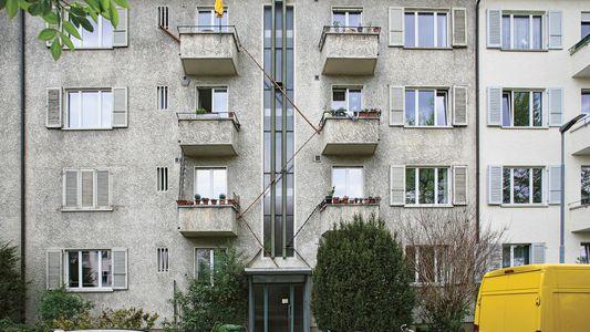 Suiza, donde los gatos tienen escaleras propias