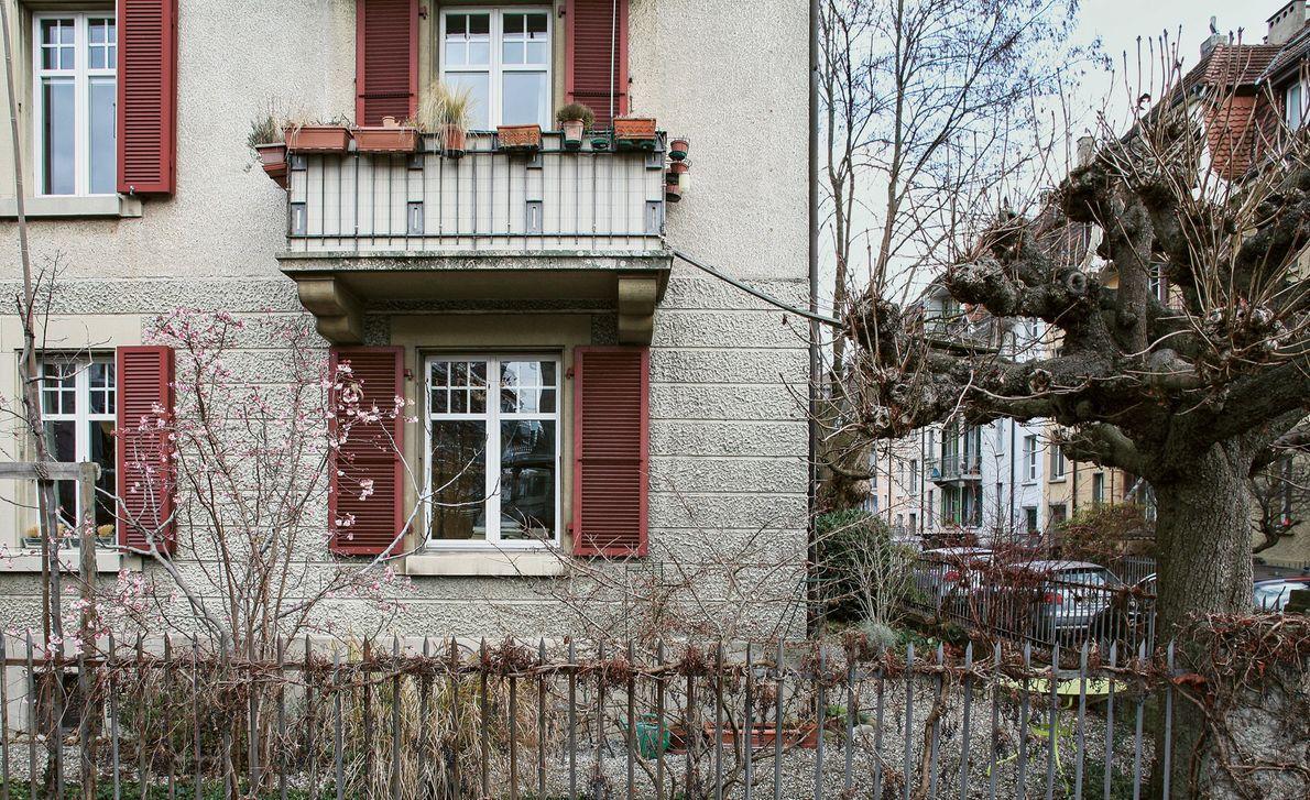 Sabina Maeder construyó un puente desde su balcón hasta un árbol para su gato de 17 ...