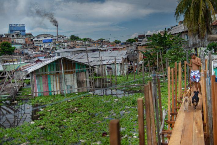El barrio Educandos, en Manaus, durante las inundaciones de los ríos Solimões y Negro, en la ...