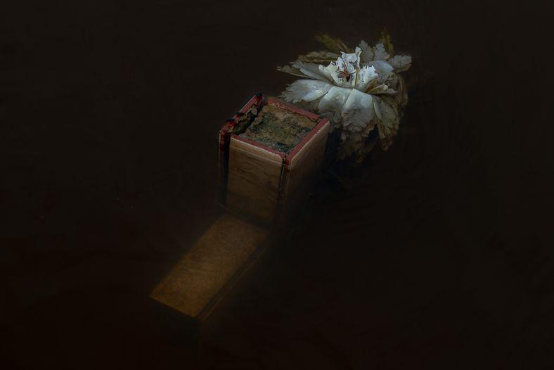 Cruz del cementerio de Careiro da Várzea completamente inmersa en el agua de la inundación de ...