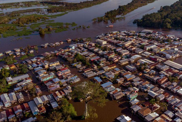 Anamã, en el interior del Estado de Amazonas, durante las inundaciones en la cuenca del Amazonas ...