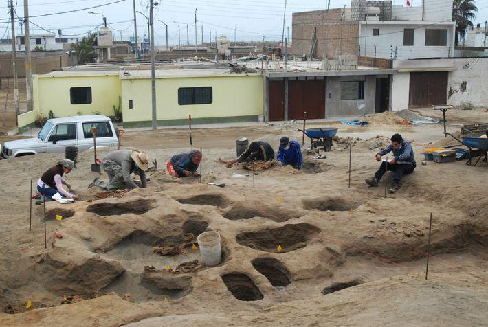El arqueólogo peruano Gabriel Prieto, el segundo desde la izquierda, excava el lote costero donde el ...