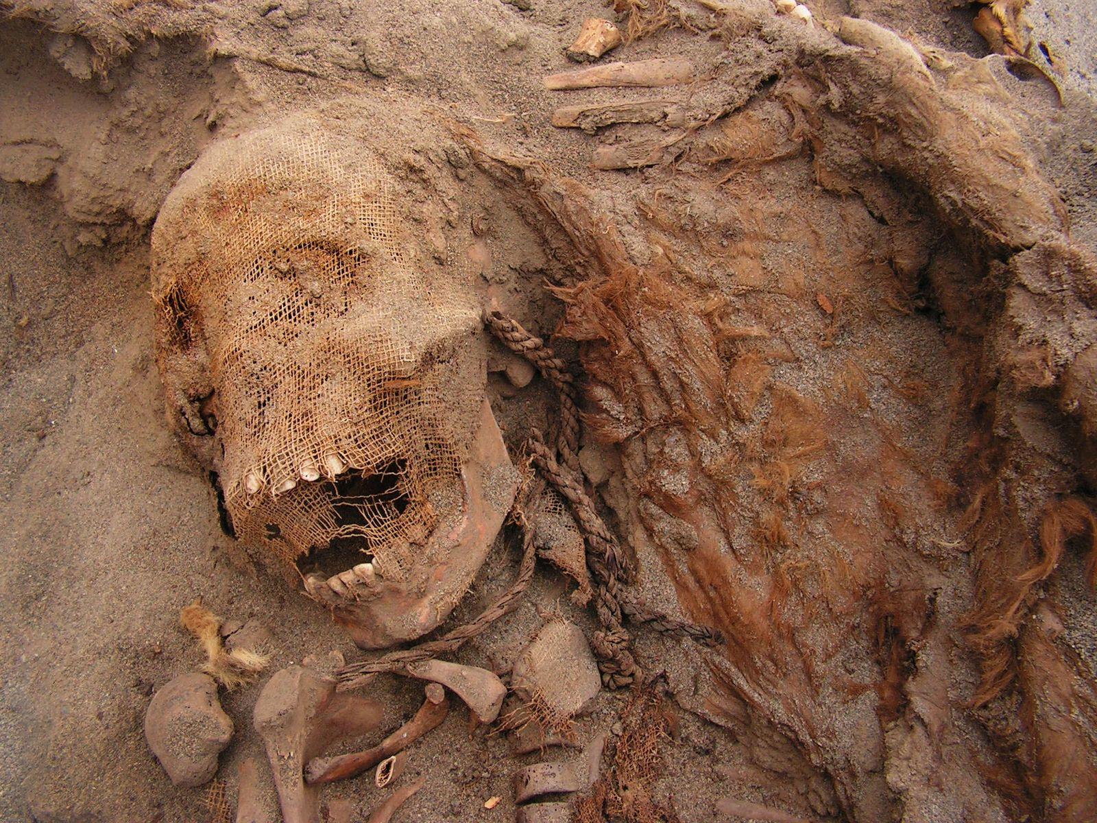 Los investigadores continúan desentrañando los eventos en Las Llamas, y esperan finalmente explicar por qué y ...