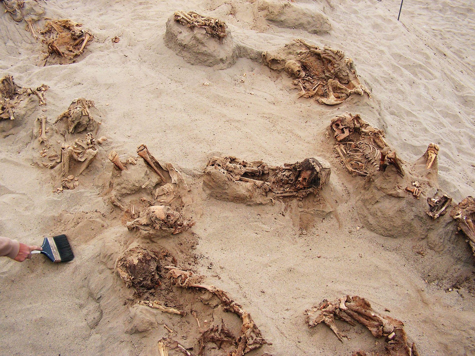 En el transcurso de un día, arqueólogos descubrieron los restos de más de una docena de ...