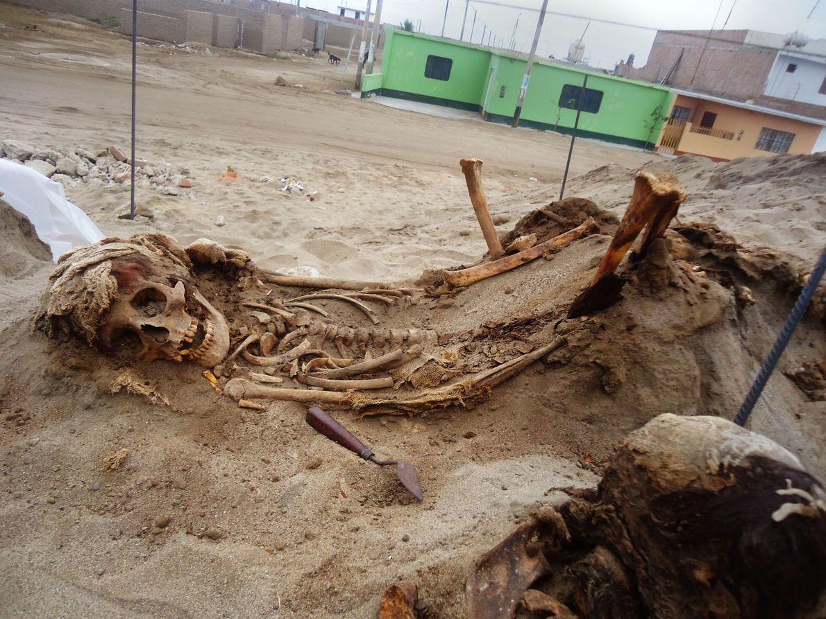 Los residentes locales alertaron al arqueólogo Gabriel Prieto sobre el sitio del sacrificio en 2011, y ...
