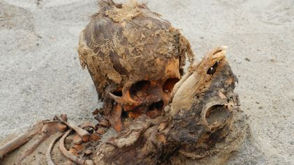 Perú: Descubren antiguo sacrificio masivo de niños que podría ser el más grande del mundo