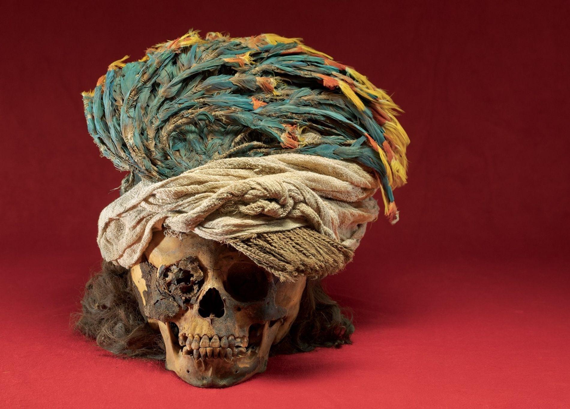 Un tocado con plumas de guacamaya corona el cráneo de un niño sacrificado, quien llevaba el ...