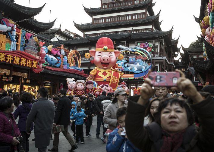 Decoraciones festivas con temática de cerdo cubren el Jardín Yuyuan antes del Año Nuevo Lunar en ...