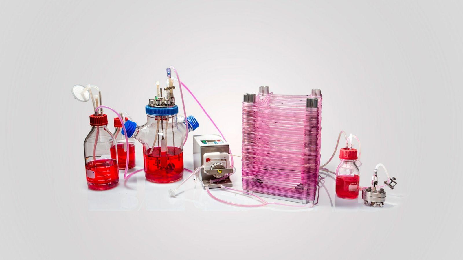 Continuous Tubular Bioreactor