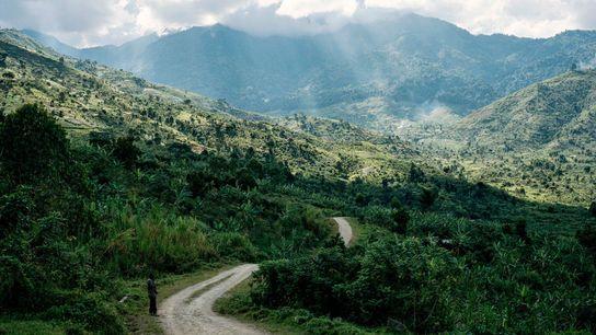 Las montañas Rwenzori, cubiertas por un denso halo de nubes,le deben su nombre a la palabra ...