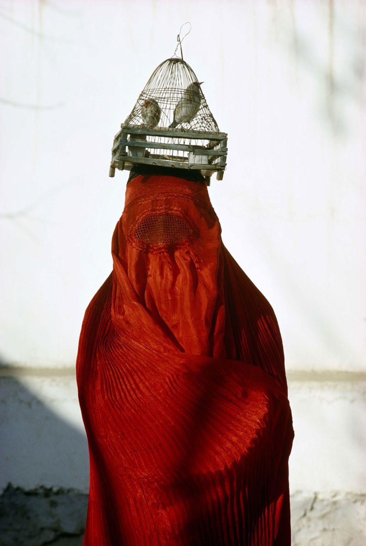 Una mujer vestida con un chadri rojo (una vestimenta tradicional islámica para cubrirse), lleva jilgueros sobre ...