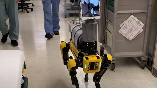 La pandemia ha beneficiado a un tipo de trabajador: el robot
