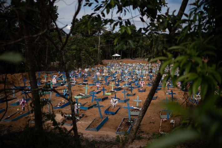 Las tumbas para las víctimas del COVID-19 llenan una nueva sección del cementerio de Nossa Senhora ...
