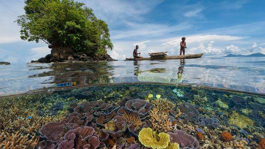 Fotografías innovadoras que muestran dos mundos en uno