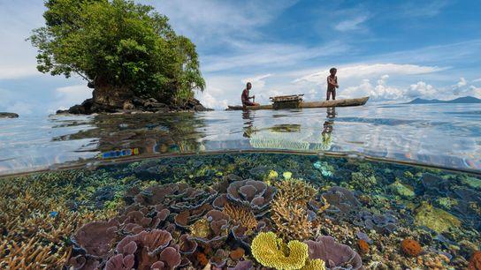 Un padre pescador y su hijo se deslizan en una canoa de madera por un jardín ...