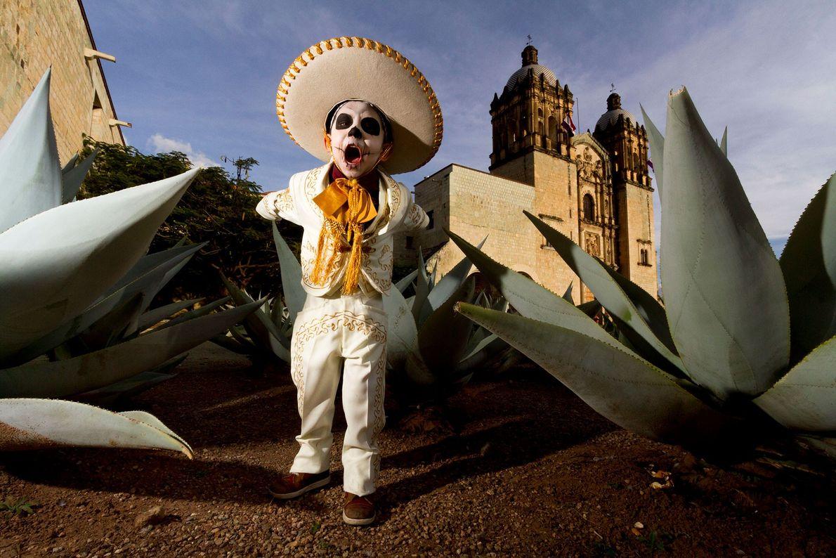 Un niño disfrazado de esqueleto charro o vaquero grita en medio de filas de plantas gigantes ...