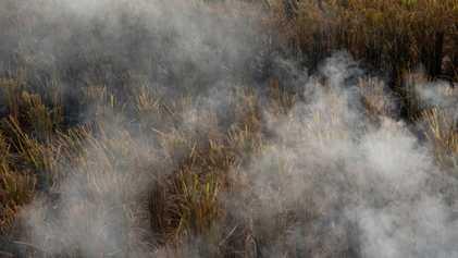 Nueva Delhi: la temporada de quema de rastrojos hace que el aire sea aún más peligroso