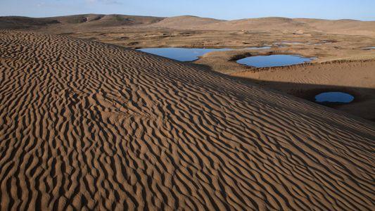 La desertificación, explicada