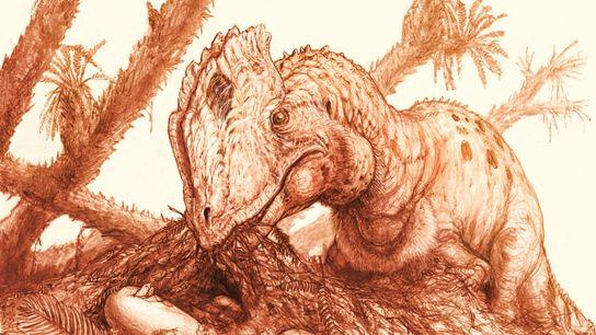 Una reconstrucción muestra a un adulto Dilophosaurus junto a un grupo de huevos para incubar.