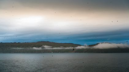 El cambio climático golpea a esta isla del Ártico: ¿puede la comunidad superarlo?