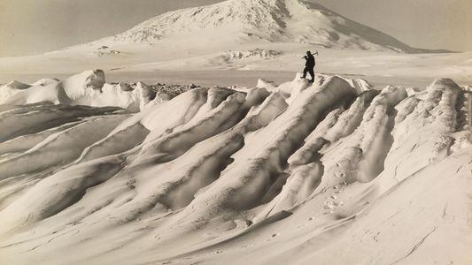 ¿Quién descubrió la Antártida?