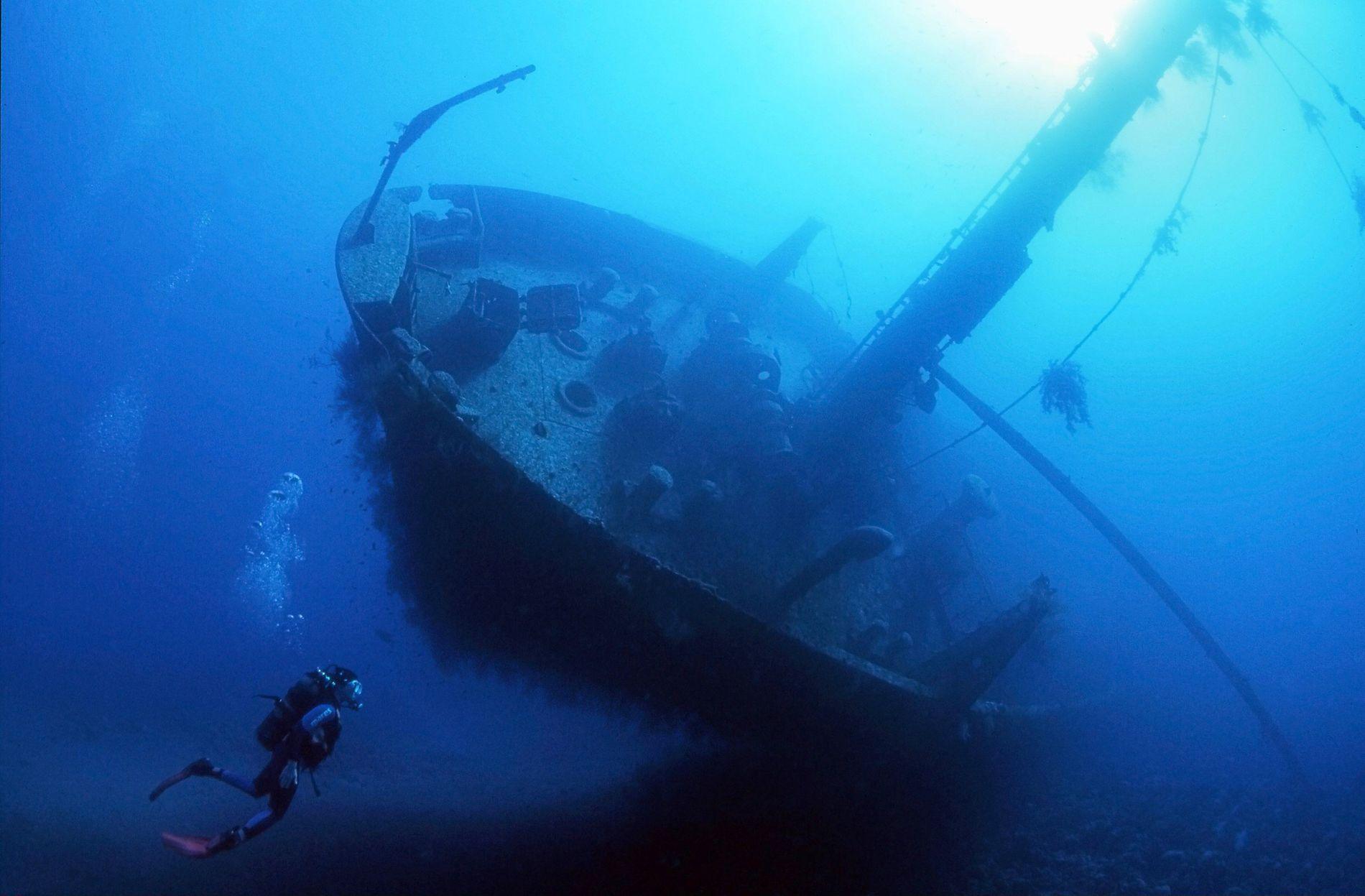 Los buceadores también pueden explorar lugares de buceo alternativos, entre ellos barcos y un avión Hercules ...