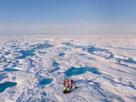 ¿Por qué una corriente marina es fundamental para que el clima del mundo no pierda potencia? ...