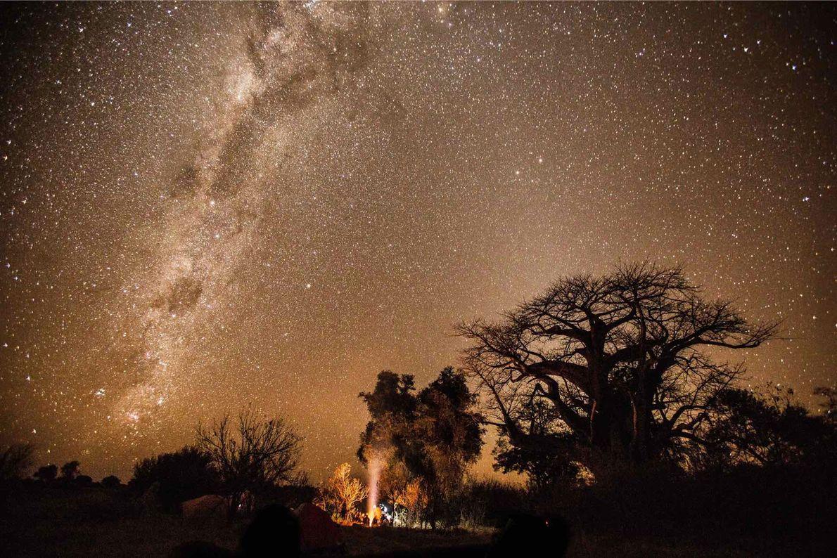 El explorador de National Geographic Steve Boyes y su equipo del Okavango Wilderness Project (Proyecto de ...