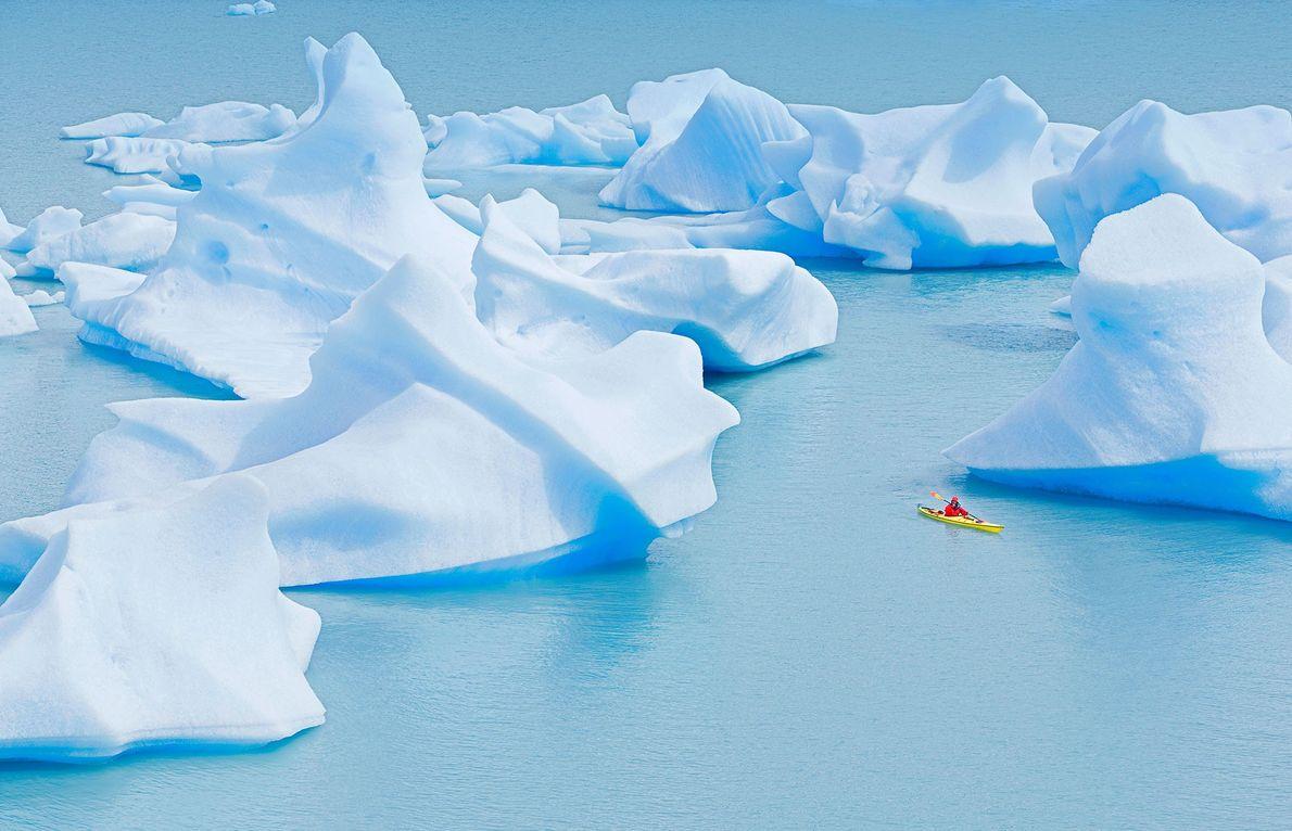 Un practicante de kayak navega cerca de increíbles icebergs en Lago Grey, Parque Nacional Torres del ...