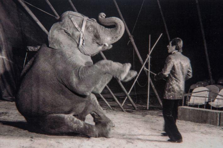 Mara y Quaker, su entrenador, en el Circo Sudamericano, en 1970.