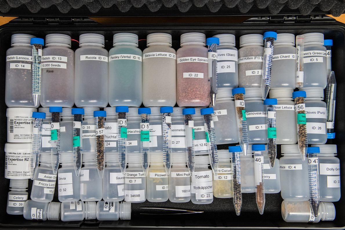 """Semillas de 60 variedades de plantas se encuentran disponibles para cultivar en el invernadero. """"Los científicos ..."""