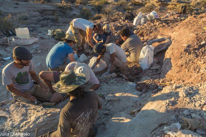 El equipo que acompañó a Motta –de unas 14 personas- trabajó codo a codo con el ...