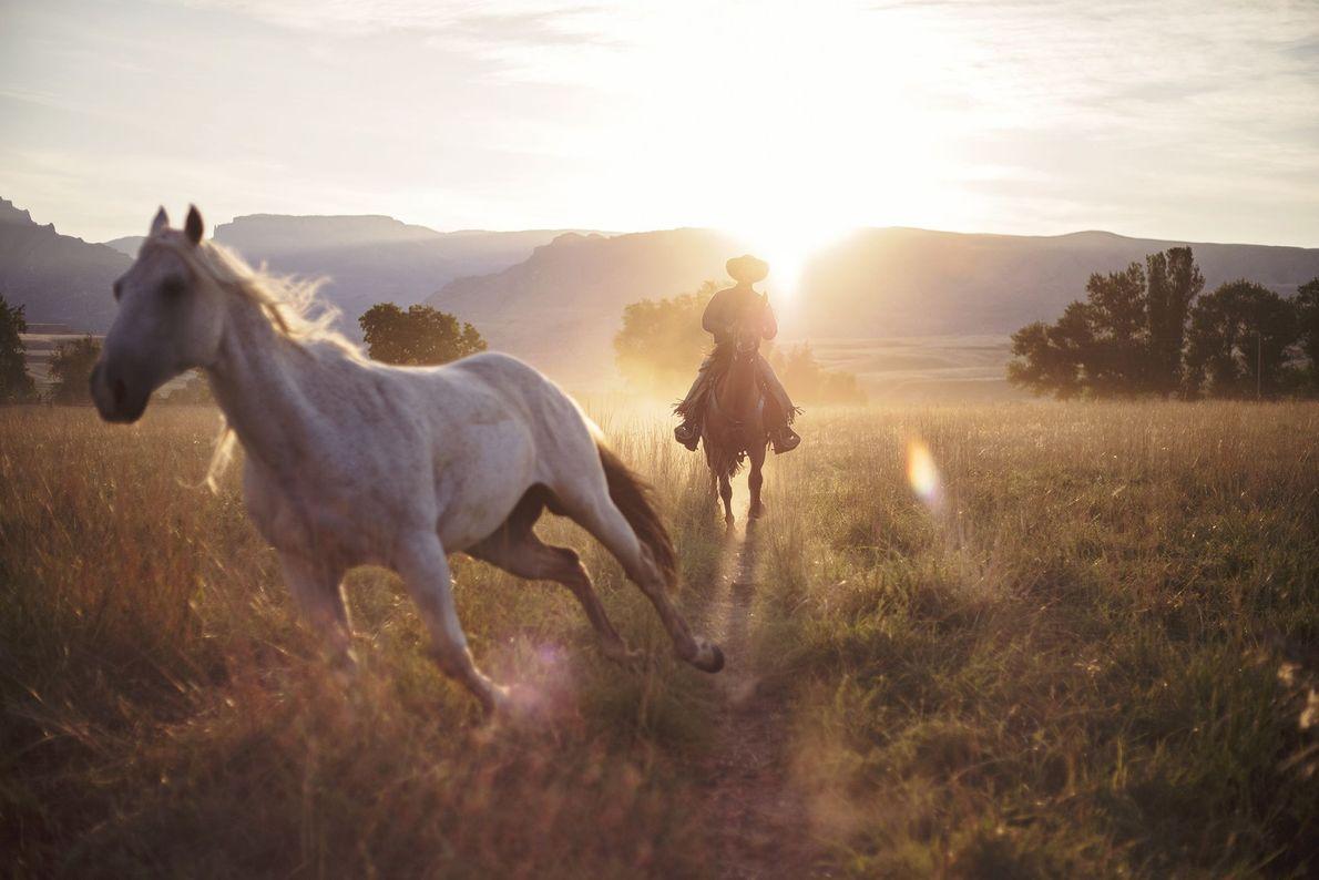 Mañana en el rancho