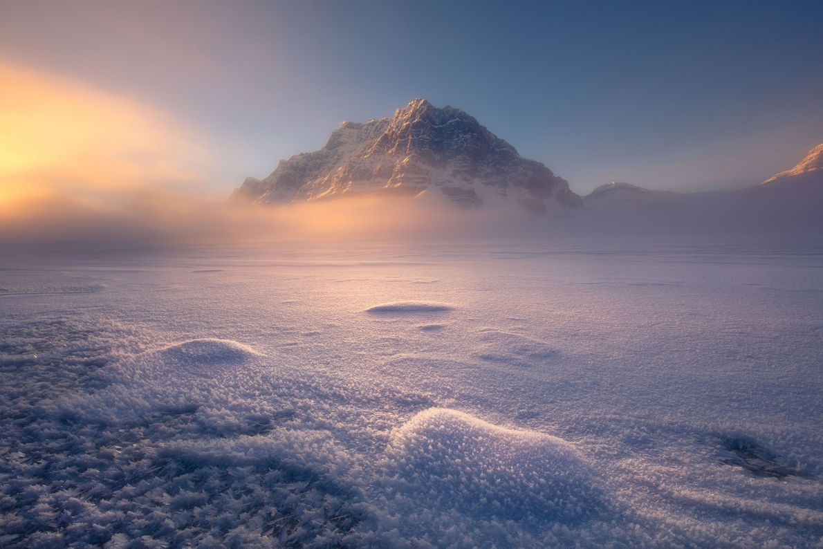 Maravilloso mundo invernal