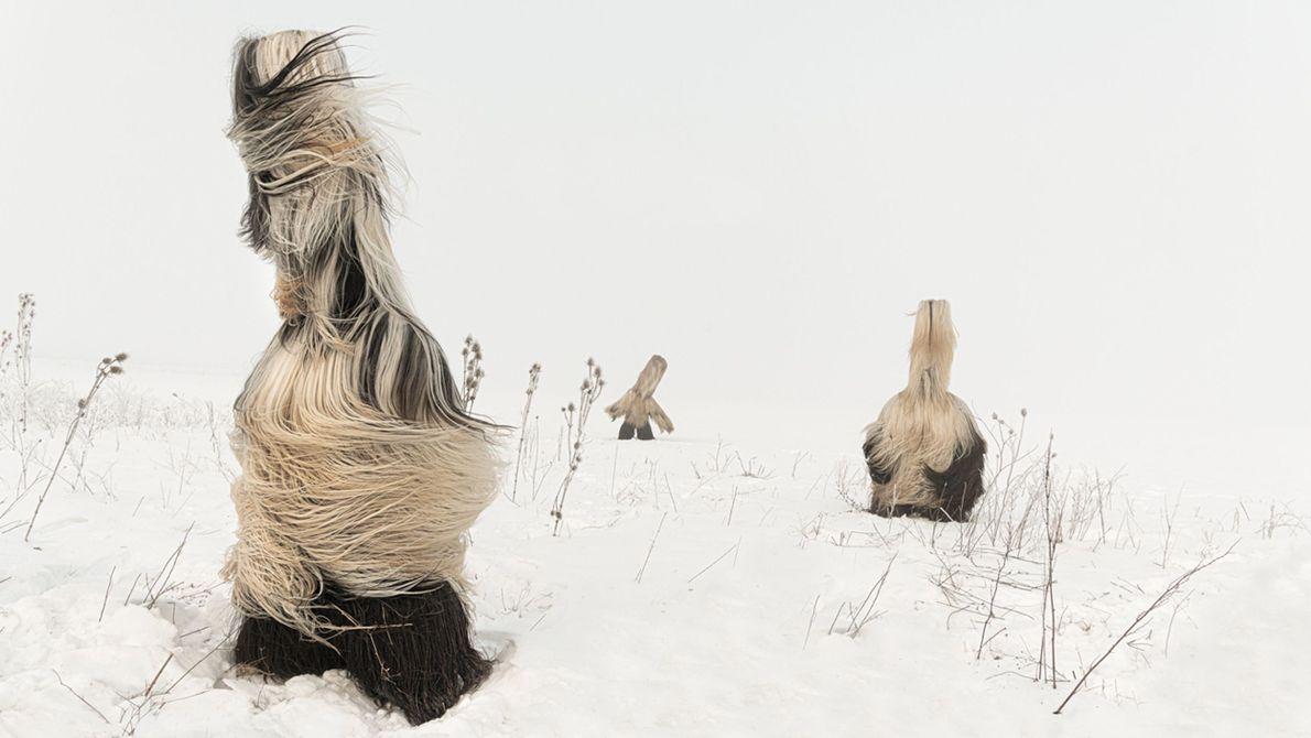 Kukeri en invierno