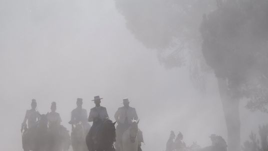 Nubes de polvo