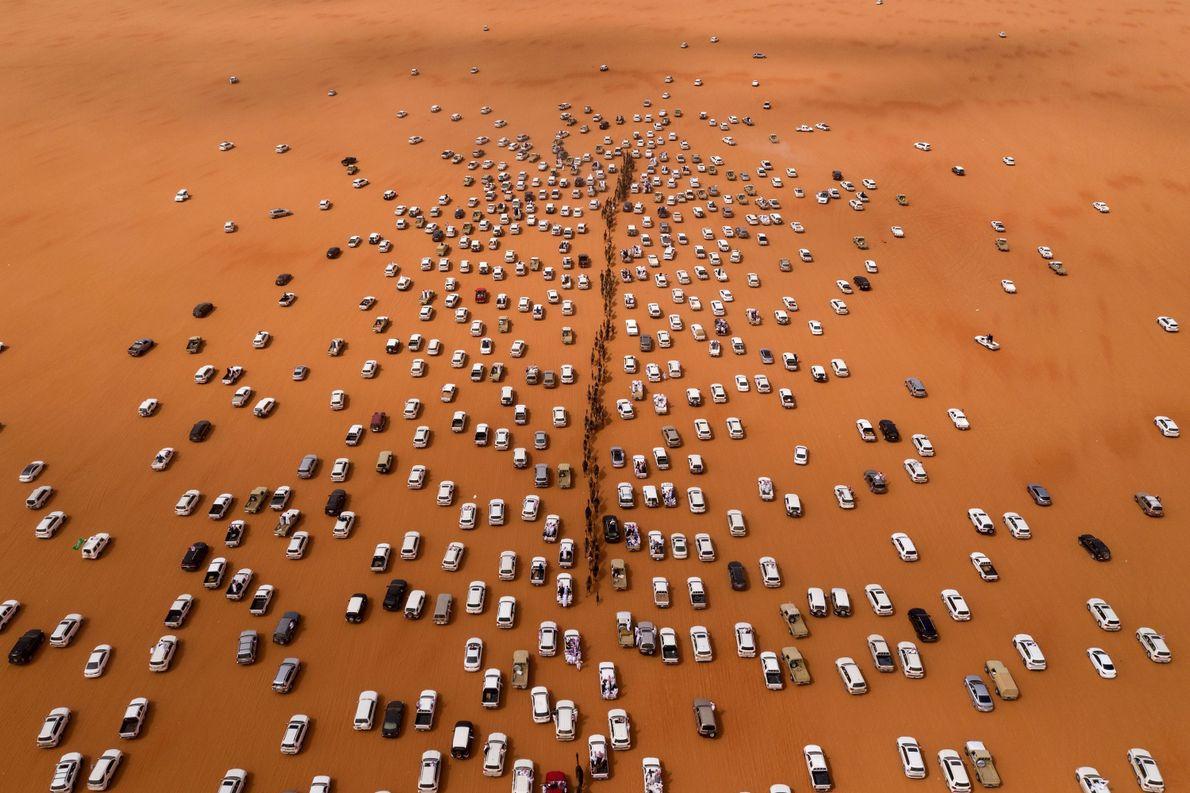 Desfile de camellos